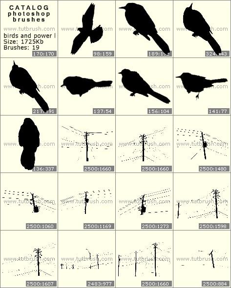 Кисти фотошоп Электрические линии и птицы