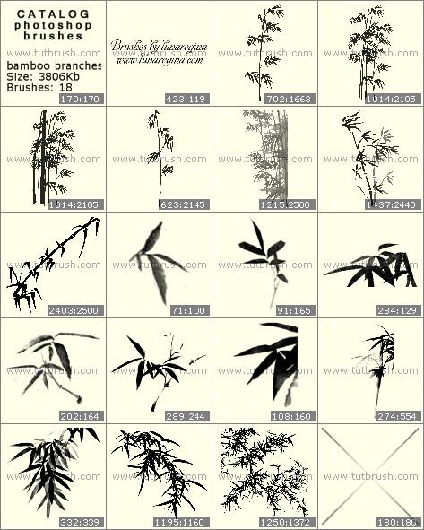 Кисти фотошоп Ветви бамбука