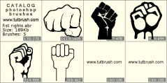 Fist Rights