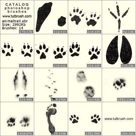 Кисти фотошоп Следы животных на поверхности
