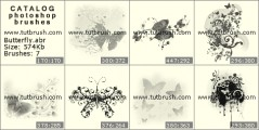 Прикольные бабочки