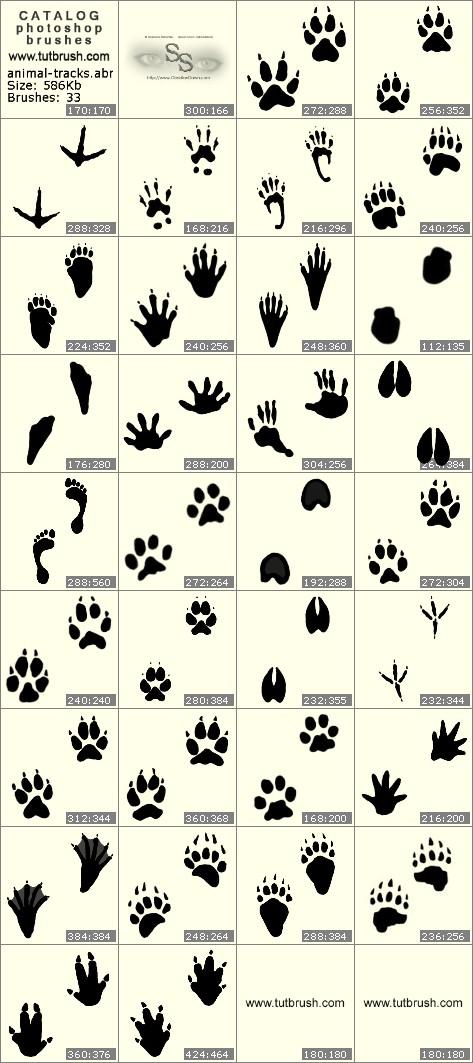 Кисти фотошоп Следы животных