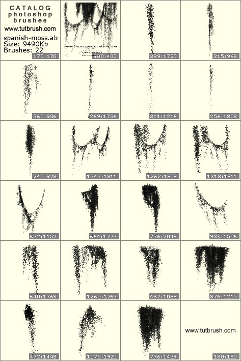 Photoshop brushes Spanish moss