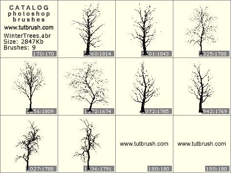 Кисти фотошоп Зимние деревья