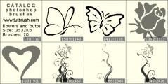 цветки и бабочки